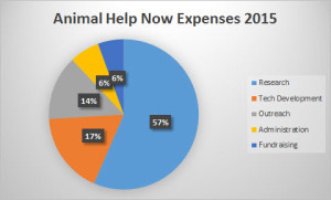 expense pie chart