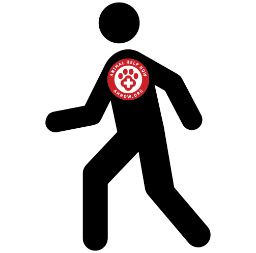 Person walking with AHNow logo