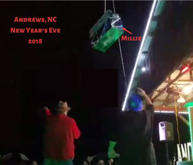 "Millie being lowered during the 2018 opossum ""drop"""